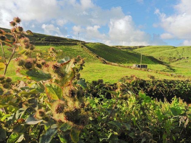 Doolin countryside